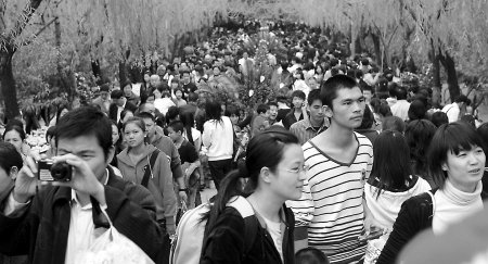 菊展迎来首个周末 10万游人昨挤爆西湖公园