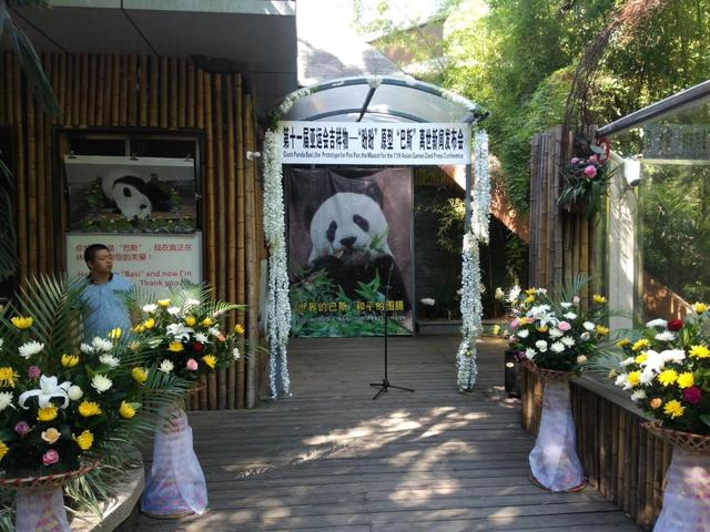 """传奇熊猫""""巴斯""""于昨日上午在福州去世"""