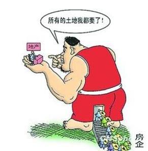 """中国土地管理""""反周期""""调控目标初步实现"""