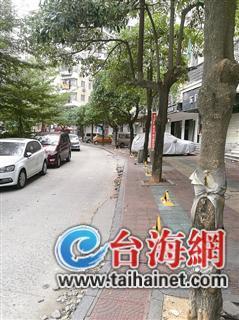 热点:漳州龙池一小区人行通道竟成了私人车位