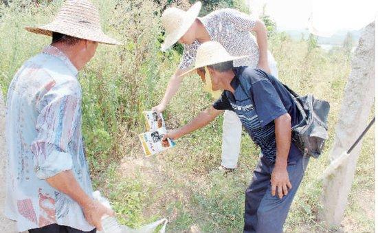 厦门翔安��山社区 红火蚁肆虐20多村民被咬伤