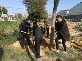 石狮多部门组织参加义务植树活动