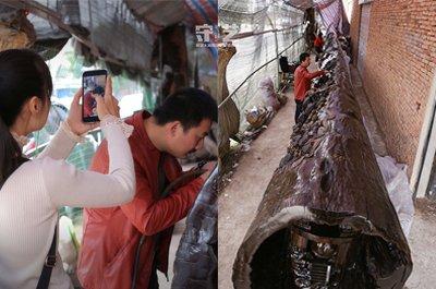 闽侯网红工匠坐拥35万粉丝 17米木头上雕刻3年不为钱