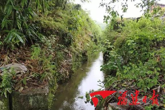 宁德黄鞠灌溉工程入选世界灌溉工程遗产名录
