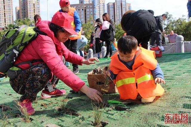 """闽江公园举办植树节活动 200多人""""插秧""""打造绿色生态江岸"""