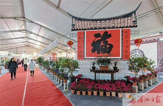 莆田市举行迎春花展 上千盆花卉绿植齐亮相
