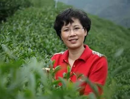 原龙岩新罗区委常委赵山凤受贿案作出一审判决