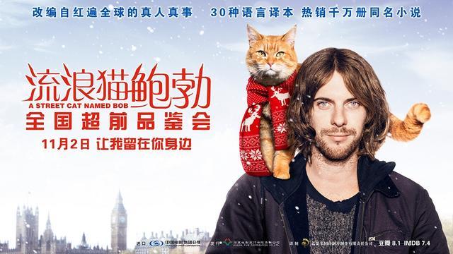 宣言《v宣言猫鲍勃》在厦举行开启朋友姐姐告白看片海报的电影1韩国电影百度云图片