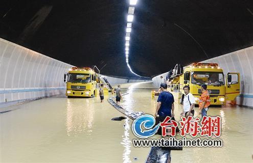 厦防洪防台风应急预案修订 积水30厘米关闭隧道