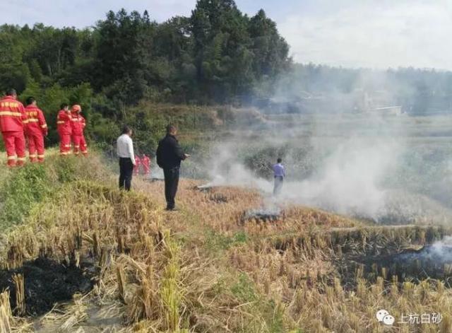 龙岩一村民野外纵火违反禁令 被拘留5日