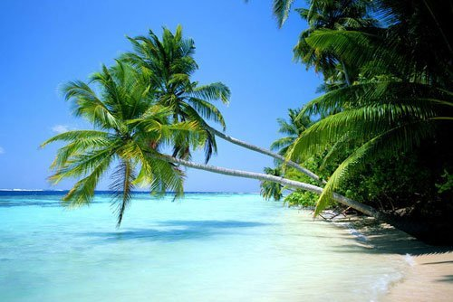 经典自驾游 体验海南岛迷人风景