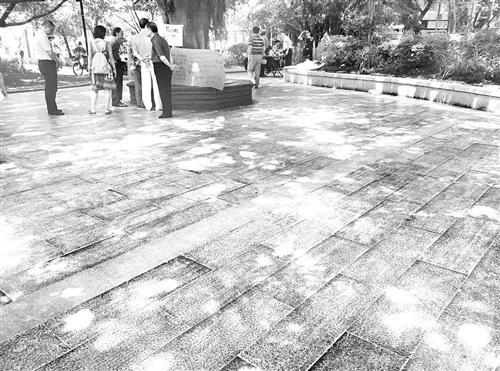 福州广场舞老人公园内做这事 女子差点四脚朝天