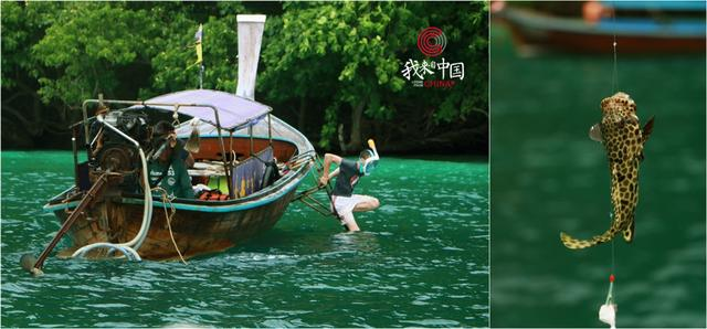 北京女教师远嫁泰国海岛,活出了你28岁时不曾想象过的样子