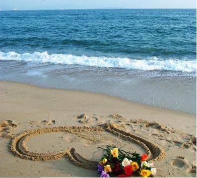 海上五月花·海贝:爱她,就给她一个家