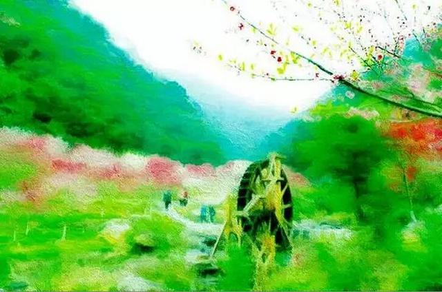 """点红""""——桃花林"""