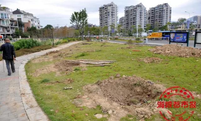 福州五四北山北路公园刚建成3月又开挖 移走数百树木