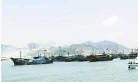 漳州打造渔港经济区