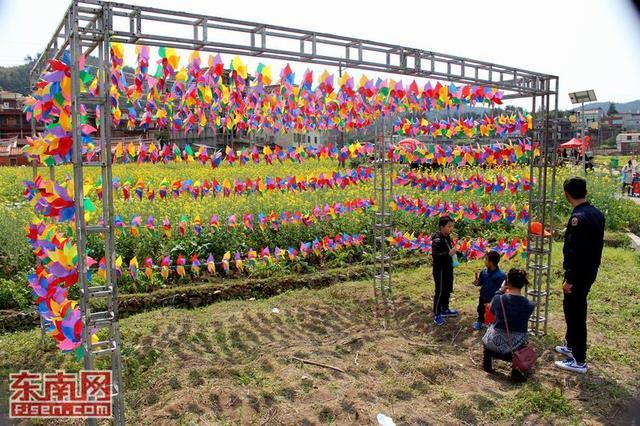 花海畅游 泉州洛江虹山油菜花文化节开幕