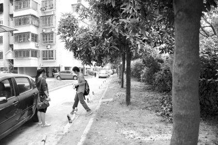 """小区绿地是否改建成停车位 业主""""内战"""""""
