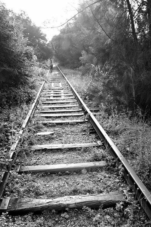 """厦门岛内老铁路将建新""""城市走廊""""(图)"""