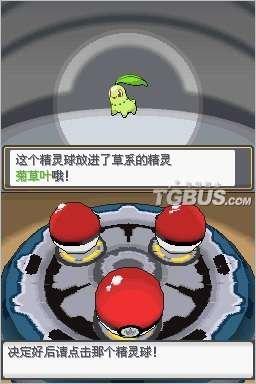NDS《口袋妖怪 魂银》中文版下载