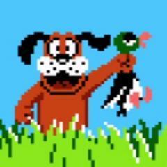 怀旧感十足 经典游戏《打鸭子》将登陆WiiU主
