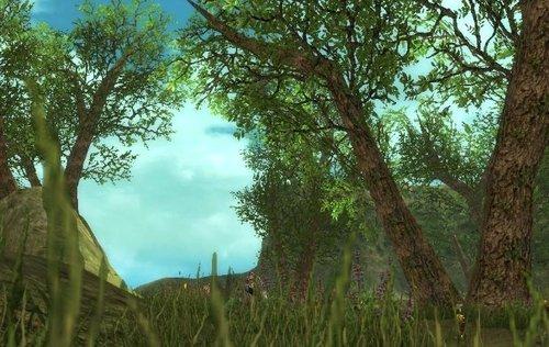 游戏心情:草长莺飞 绿水红花 龟岛游