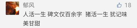 """洋葱新闻:女孩在澡堂内视频直播 网红为博关注""""真空""""上街"""