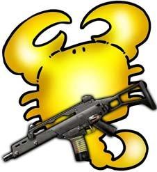 《特种部队》星座枪支最近配对(一)