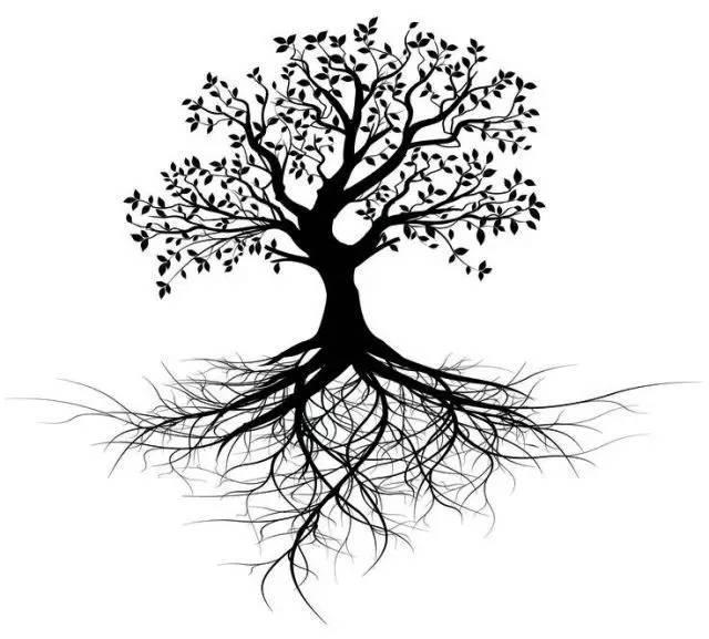 画一棵大树图片大全 图片合集