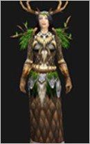 魔兽世界4.3:德鲁伊职业套装幻化装备大全