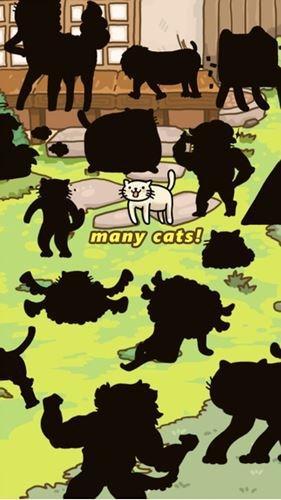 《猫的进化世界》千万别乱喂食 喵星人要变身了