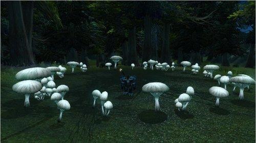 魔兽世界彩蛋低语森林隐藏的曼妙精龙之歌!