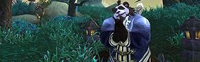 看点一:熊猫 武术 中国风