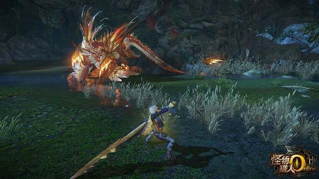 《怪物猎人OL》星龙各部位破坏攻略