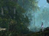 上古世纪场景之丛林