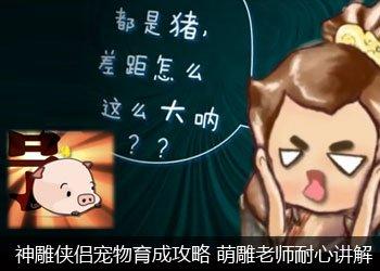 腾讯游戏频道神雕侠侣专区