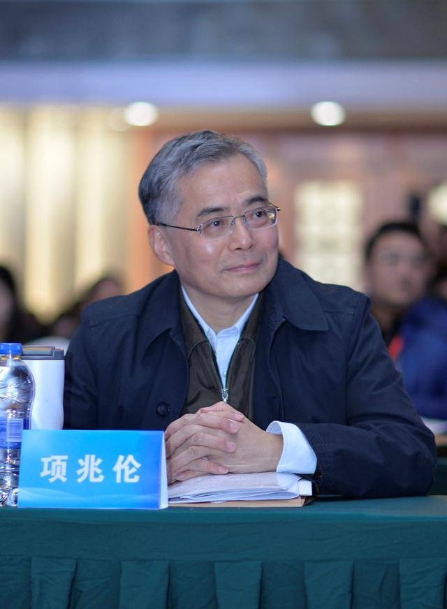 文化部党组成员、副部长项兆伦