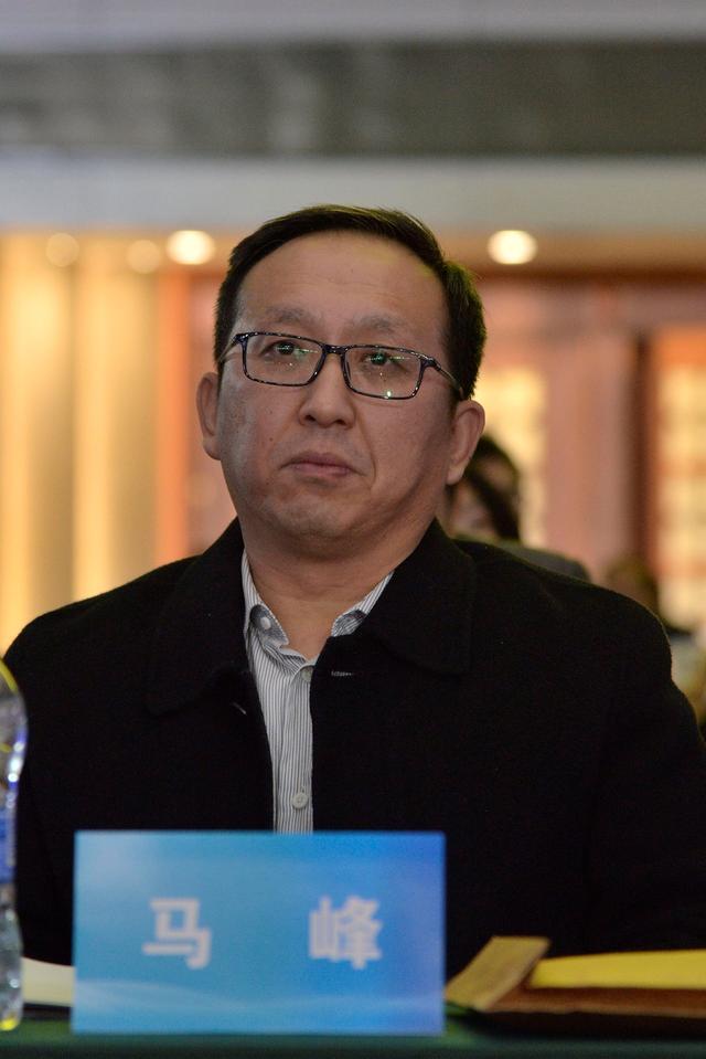 文化部文化市场司副司长马峰