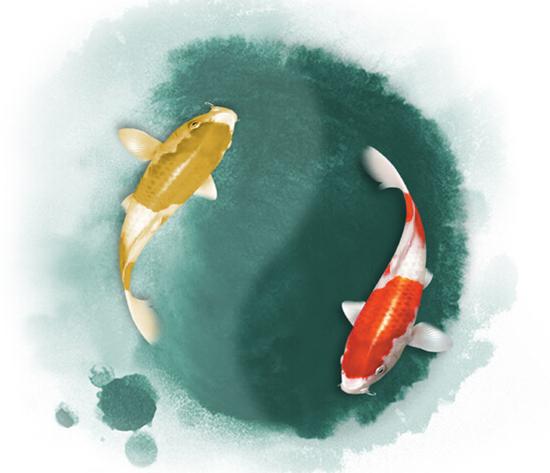 【中盛·圣地亚哥】太极鱼 周末把好风水带回家图片
