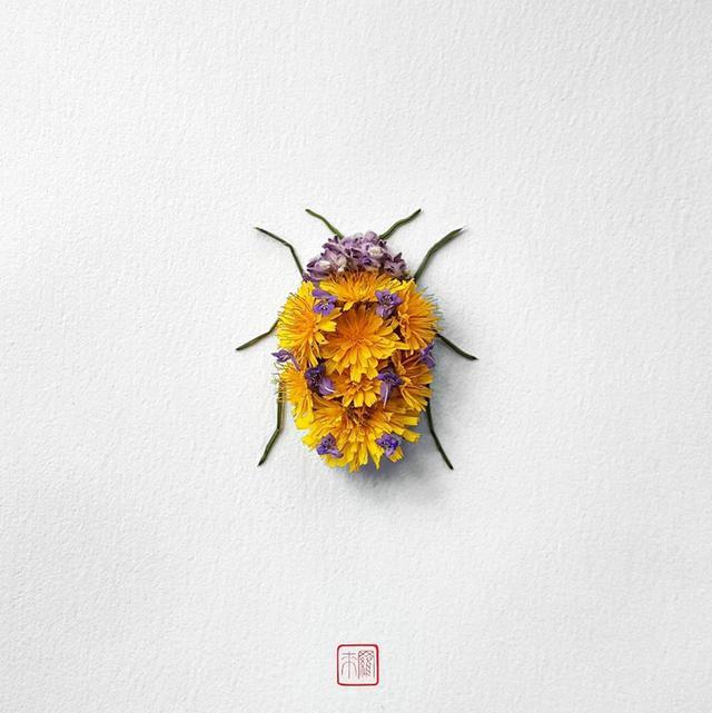 """鲜花可以""""造物"""",比如昆虫"""