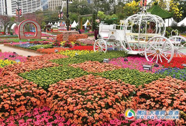 赏花何须外游? 来看香港花卉展2018 便成