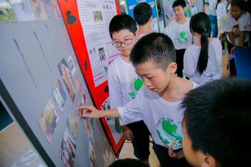 小学生,大担当,做公益,助十里荒漠变绿洲