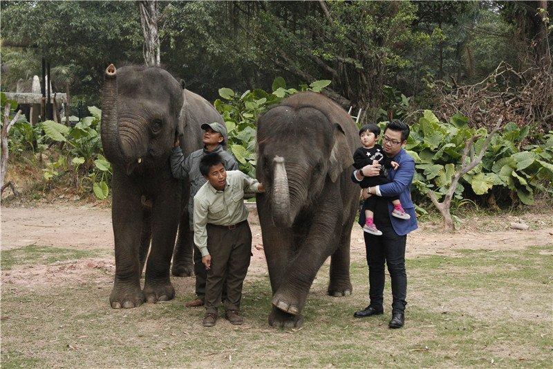 """报名就有机会免费参加长隆野生动物世界""""?#32844;?#21435;哪儿""""体验游"""