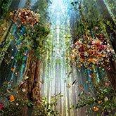融合自然元素的奇妙世界