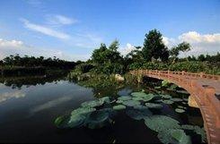 东莞:国际花园城市