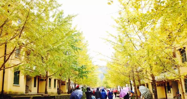 广东哪里秋色最迷人?当属粤北!