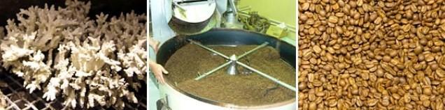 为环境出一分力 珊瑚咖啡