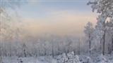 莫尔道嘎冬季旅游视频