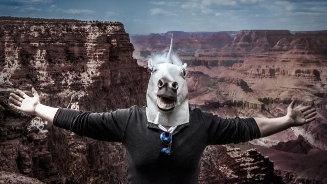创业企业有很多,但我想成为独角兽企业